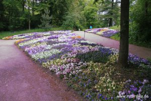 201606123 Blüten Theresienstein Hof 02
